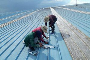 Chống nóng mái tôn bằng xốp tại KCN công nghệ cao sinh học