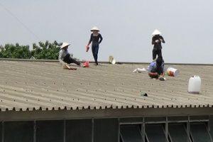 Hot – những cách chống dột mái tôn vào mùa mưa hiệu quả